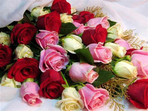 Bouquet Beautiful Roses Various Colors Bouquet Red White